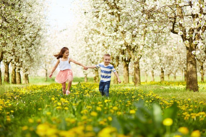 Es primavera. Hora de renovar nuestras ilusiones