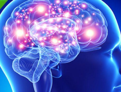 Estimulación Neuro-Refleja: Sistema Musculo-Esquelético 2ª Ed.