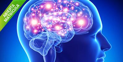 Curso Acupuntura Estimulación Neuro-Refleja