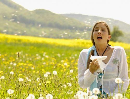 Eficacia y seguridad de la acupuntura en el tratamiento de la Rinitis Alérgica