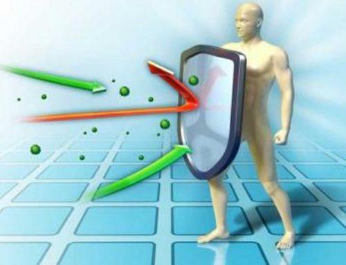 Consejos prácticos para reforzar nuestro sistema inmunitario